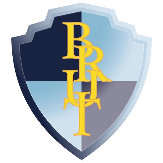 Logo BRUT 2013 3D